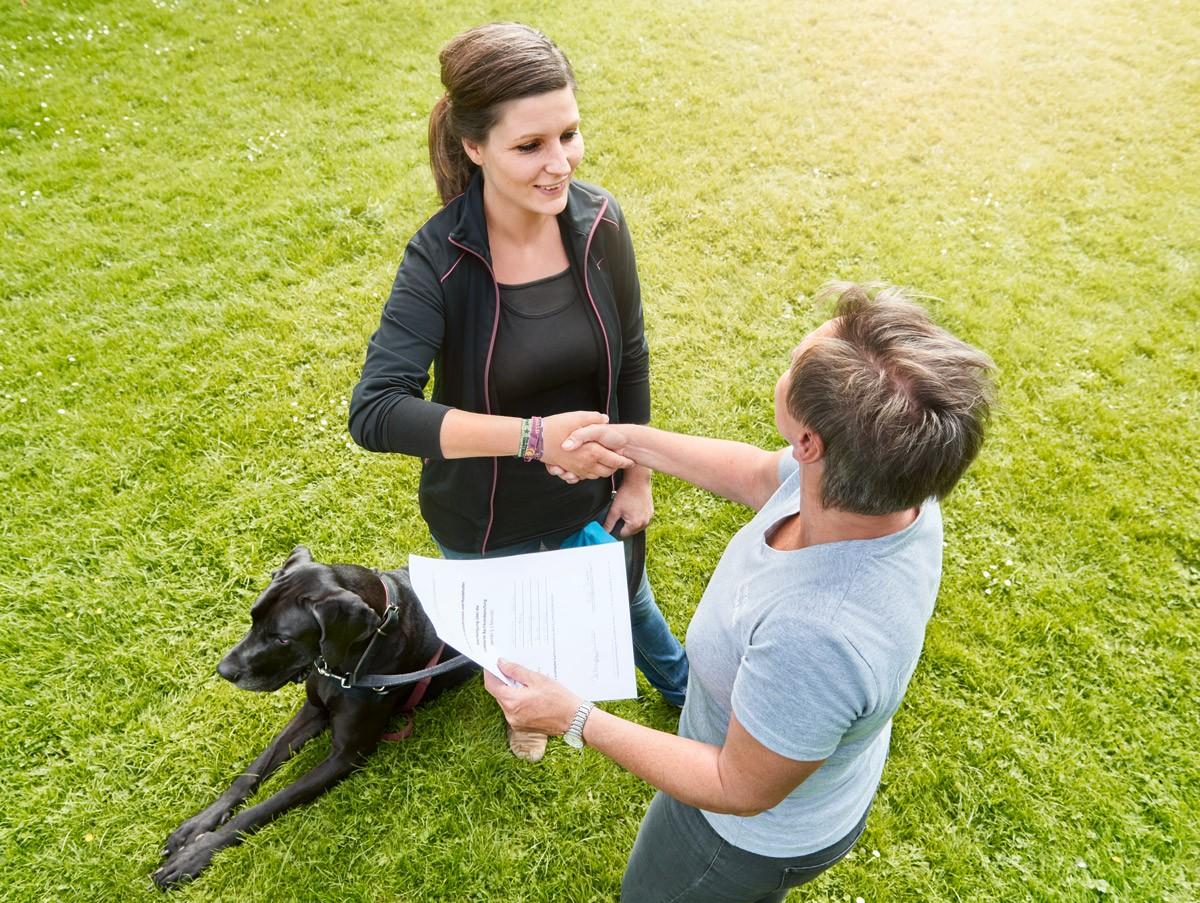 Hundeführerschein / Sachkundenachweis - Natürlich Hund - Hundeschule in Rinteln und Neustadt
